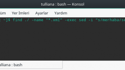 Bash komutu ile dosya içindeki bir satırı topluca değiştirmek (linux üzerinde)